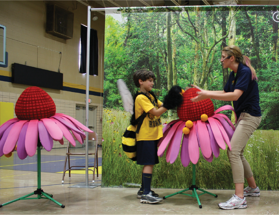 Pollination demonstration.