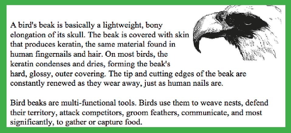 Find information about different beaks and specific adaptations in ecology books and articles.