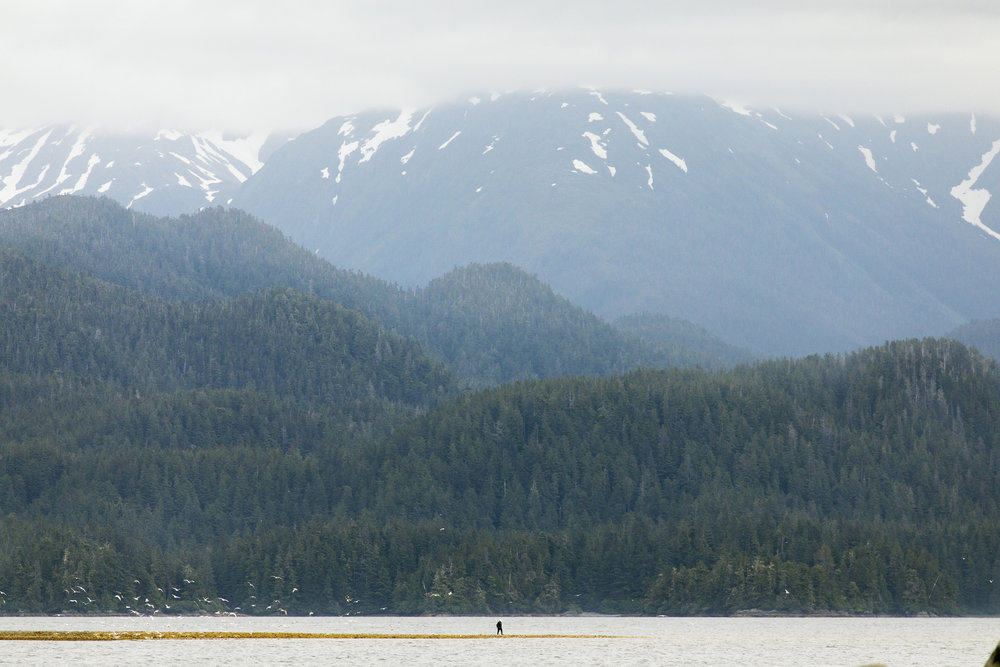 170723_Alaska - Salmon CanneryAH_0603.jpg