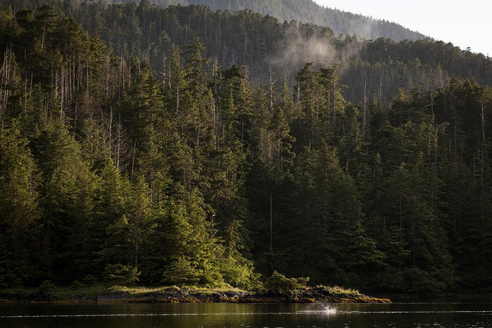 170714_AlaskaDay20-FishingAH_6081.jpg