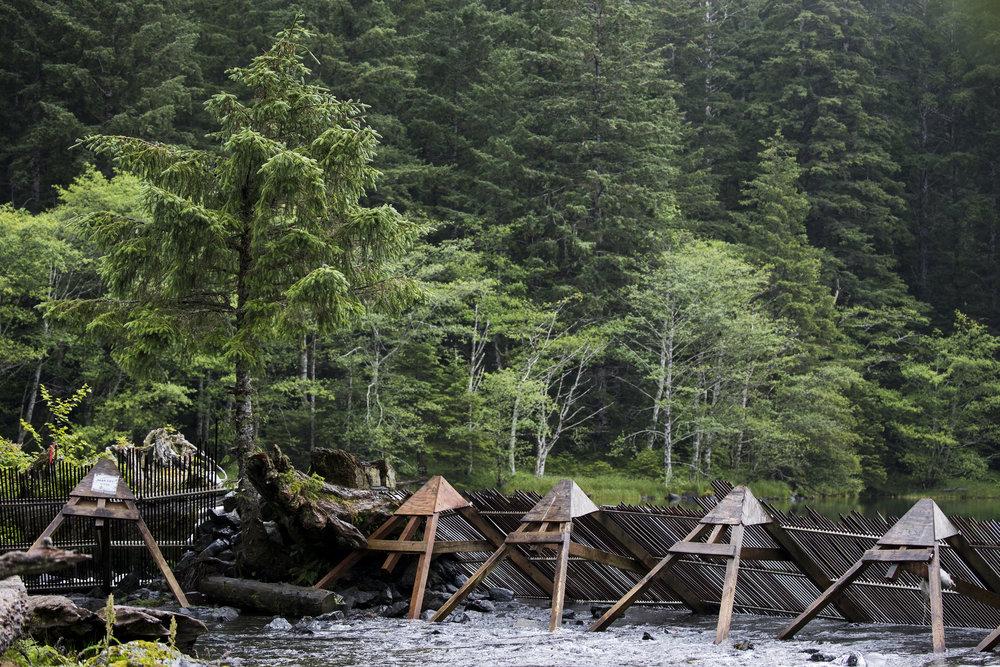 170714_AlaskaDay20-FishingAH_5579.jpg