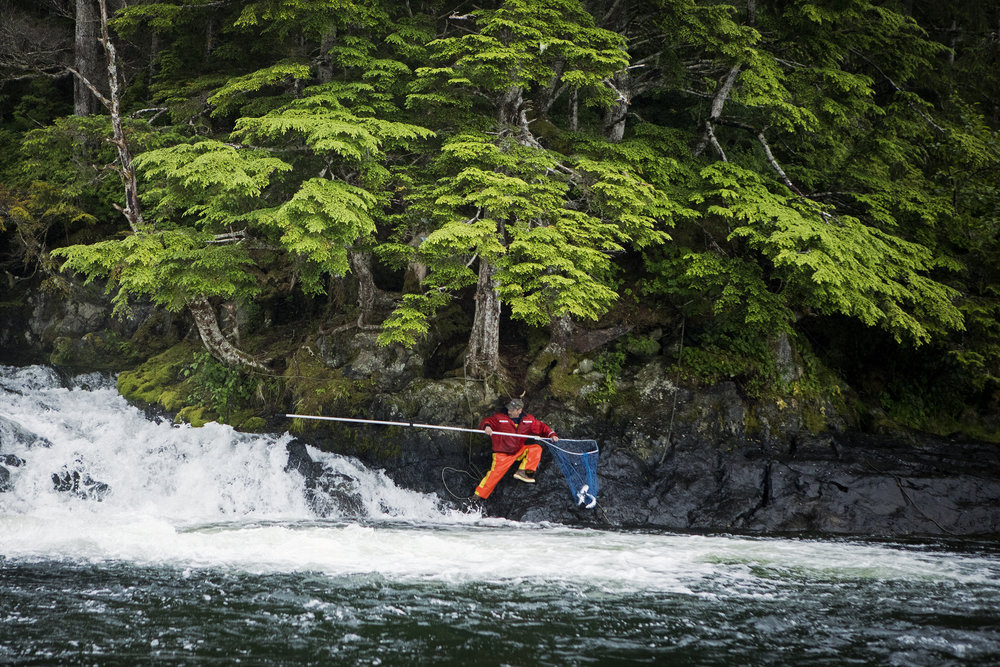 170714_AlaskaDay20-FishingAH_5099.jpg