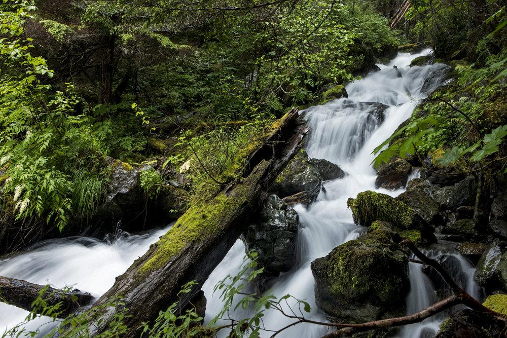170708_AlaskaDay9AH_4884.jpg
