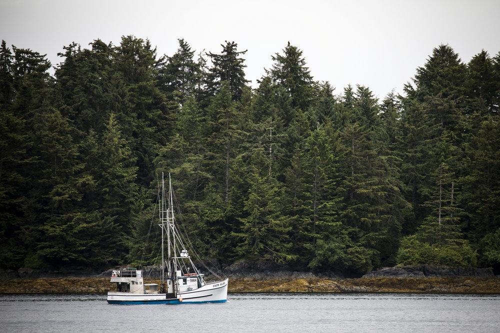 170630_AlaskaDay5AH_3778.jpg