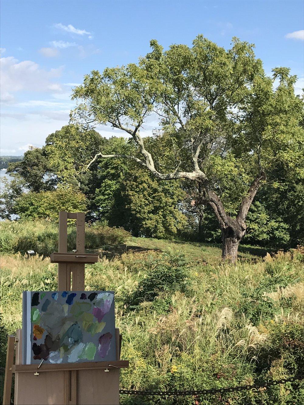 Plein Air painting at AHS River Farm in Alexandria, Virginia.