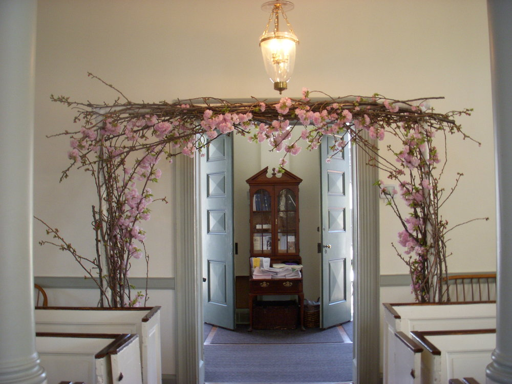 Still pretty, but we lost about half of the blooms while constructing this arch.