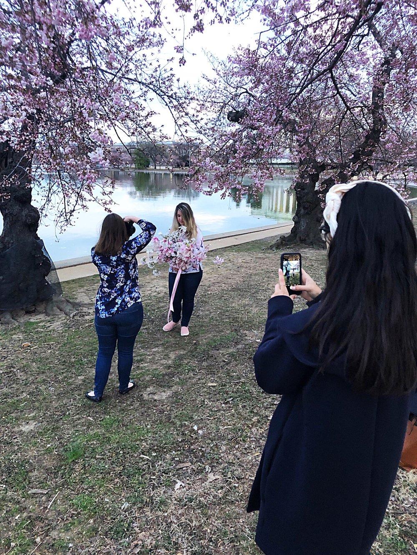cherry-blossom-friends