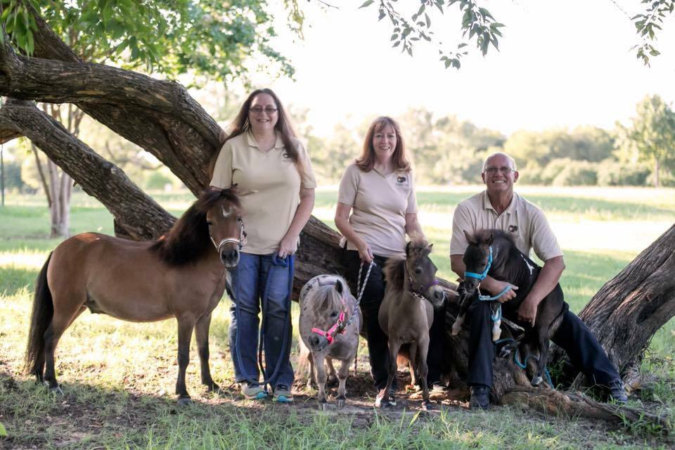 The Mini Hooves of Love team with Monarch, Hope, Faith, and Hero.