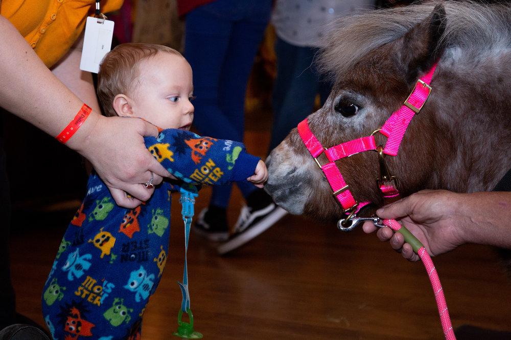 Baby Robert pets Hope at Ronald McDonald House of Dallas.
