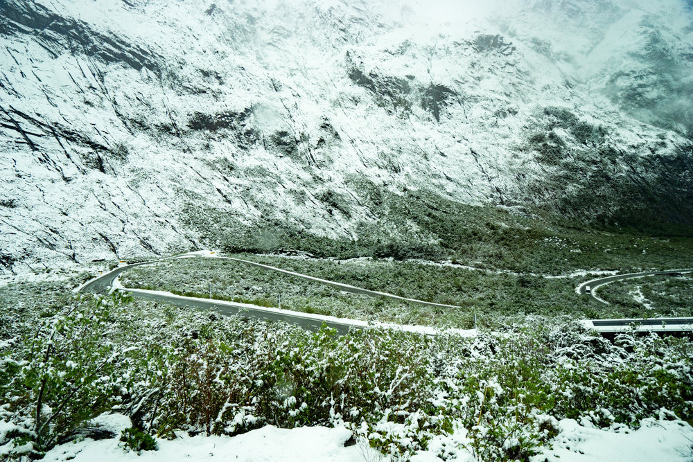 Snow greeted us on the other side of the Homer Tunnel.