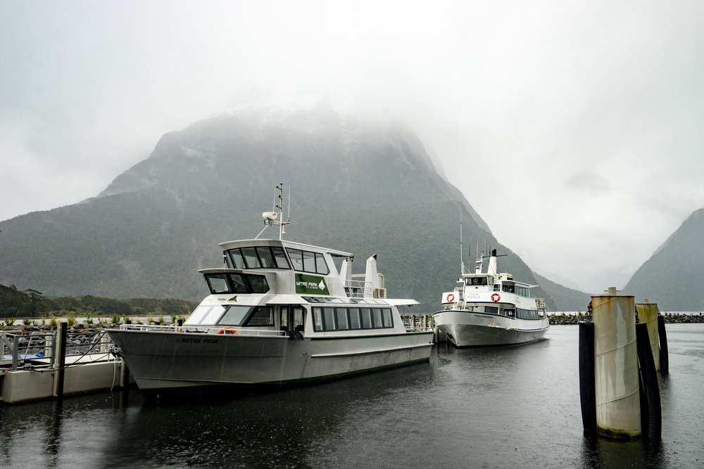 Milford Sound Cruise.