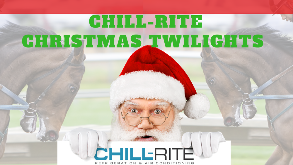Chillrite Christmas Twilight Race Meeting (2).jpg