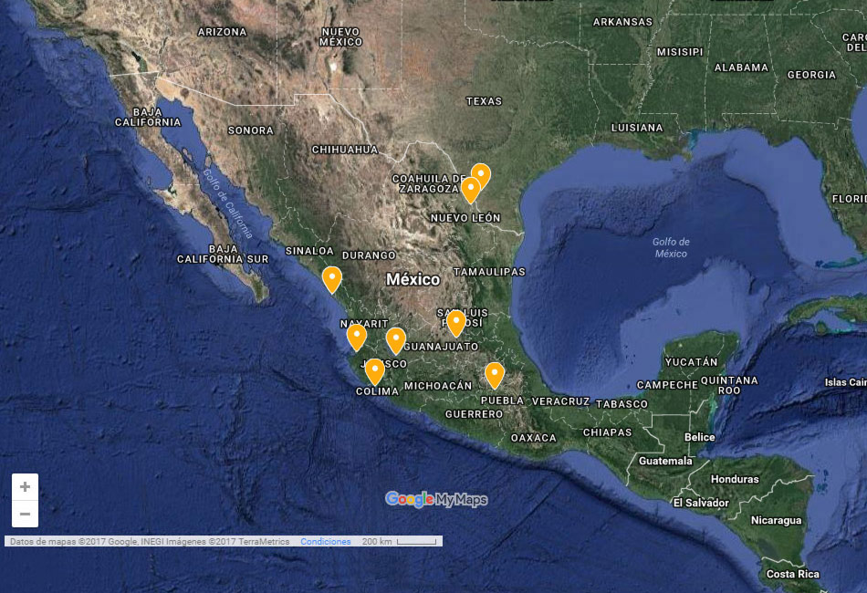 Servicios en comercio internacional (comercio exterior) de la mejor calidad en nuestra aduana en todo México. Verificacion de pedimentos aduanales, consultoria en clasificacion arancelaria, imoprtadora, despacho de mercancias, deposito fiscal y almancen de mercancias. Asociacion de Agentes Aduanales de Guadalajara, Conócenos.