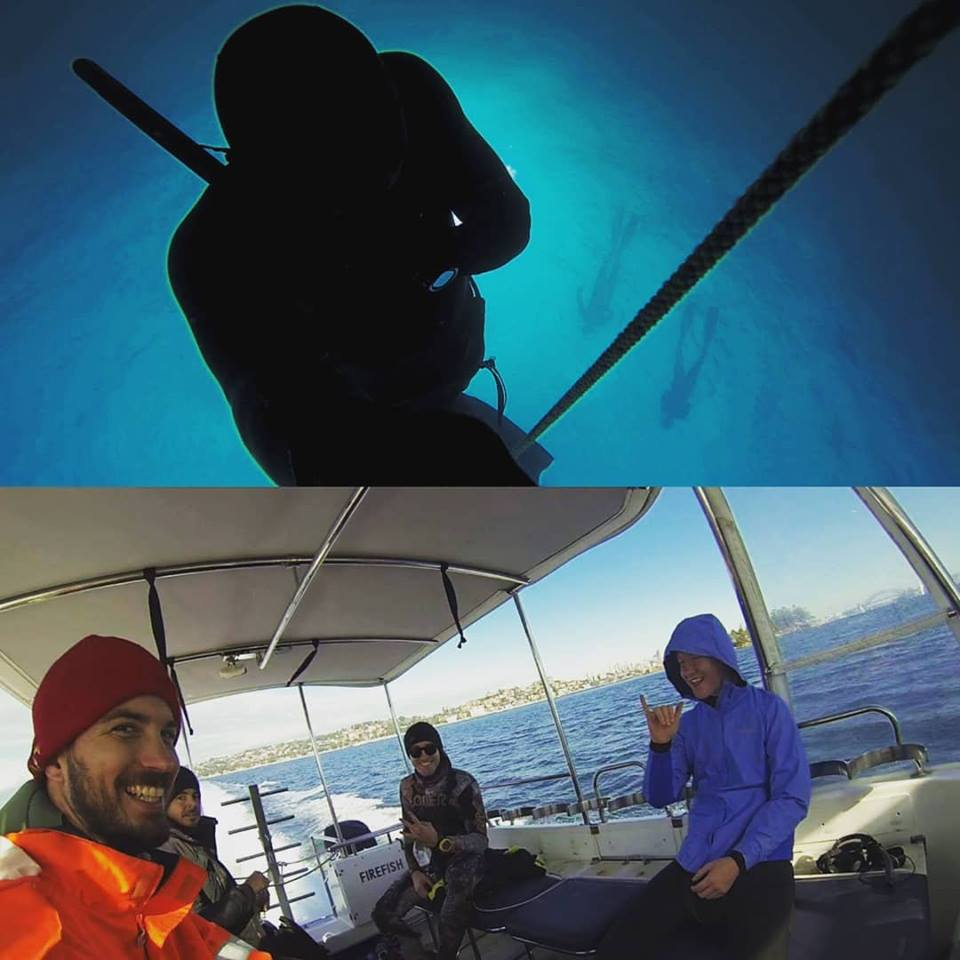 Organised boat dives and speciality charters