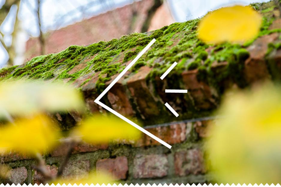 BedrijfsKracht website-38.jpg