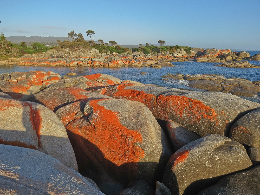 Bay of Fires is only a 55 minute drive from Scamander Sanctuary