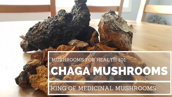 chaga-mushroom.jpg