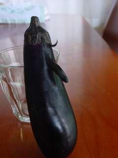 M.aubergine