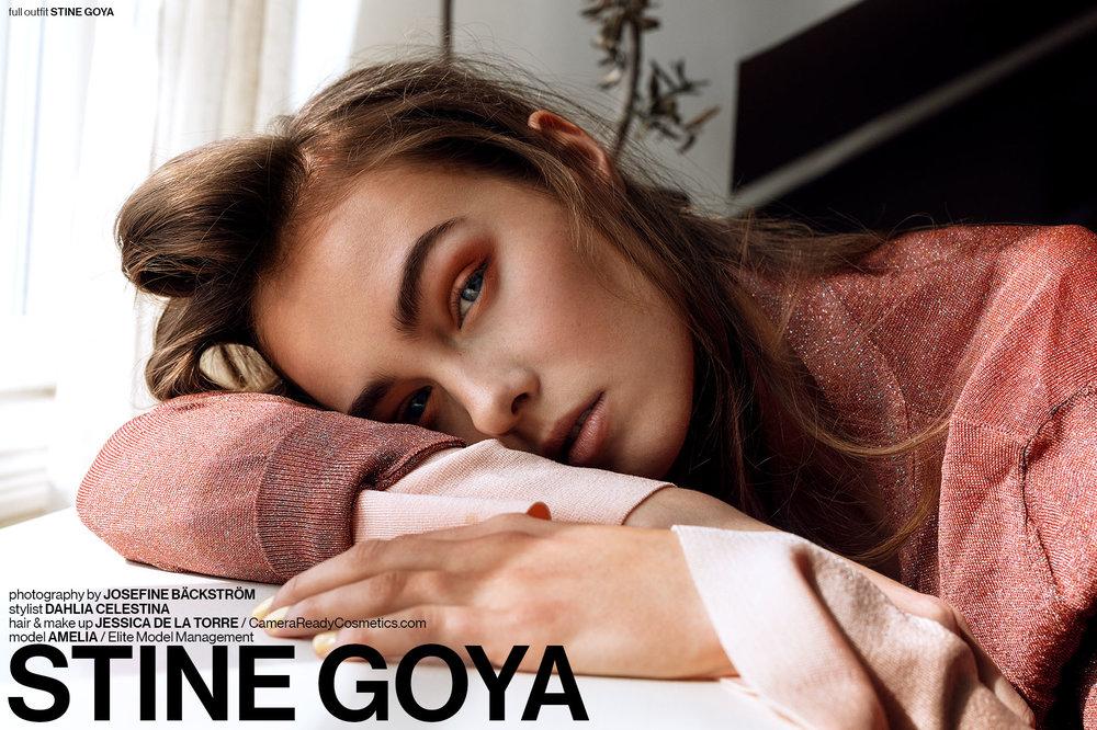 stine+goya1.jpg