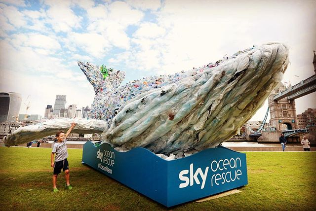 250kg of plastic end up in the ocean every day, the size of this 🐋 @skyoceanrescue is pushing the blue economy agenda by tackling single-use plastic #passonplastic #walkthetalk #oceanoptimism #ourblueplanet #nextgeneration Thank you @frederic_michel_ 🙌🏻