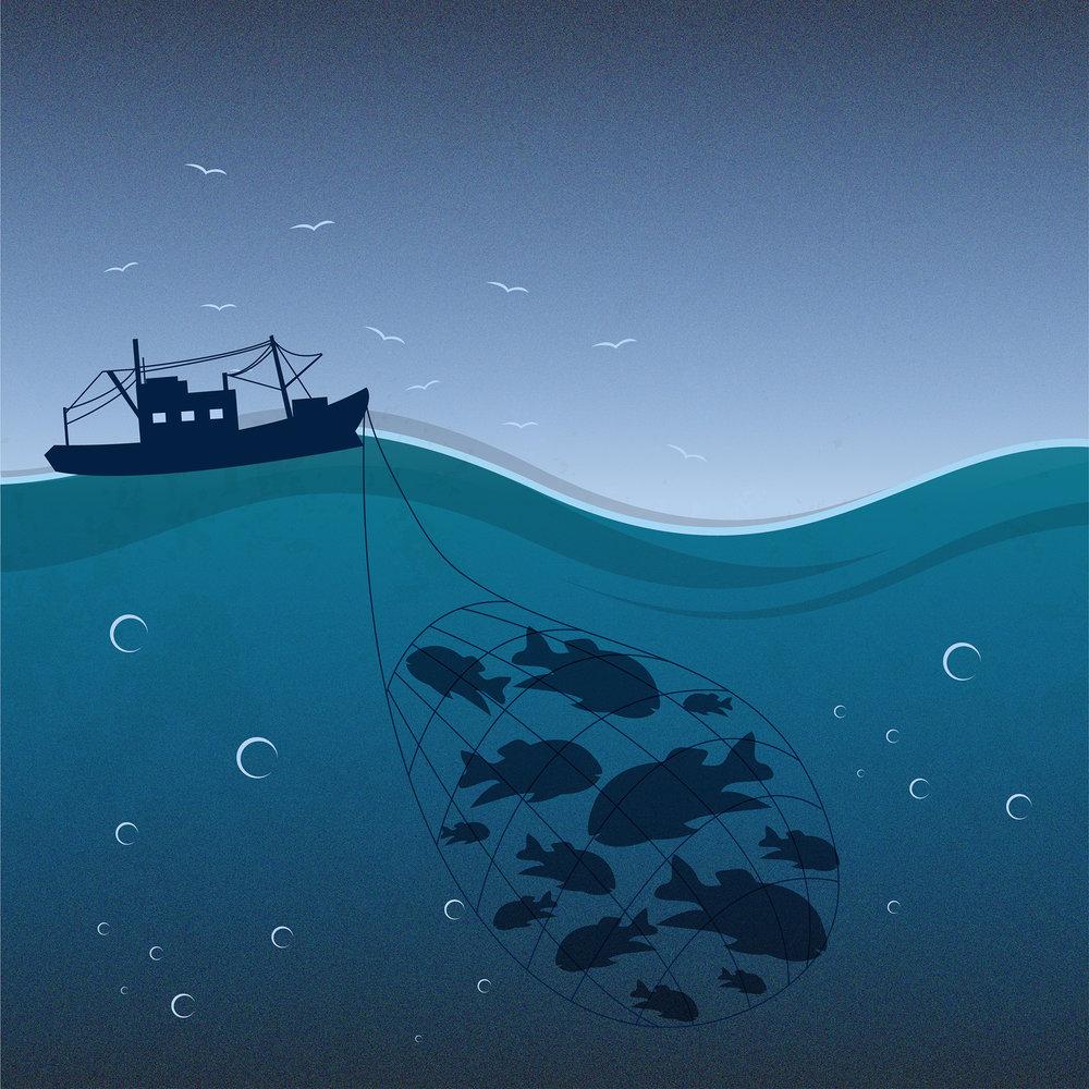 Oceans Illustration-01_small.jpg