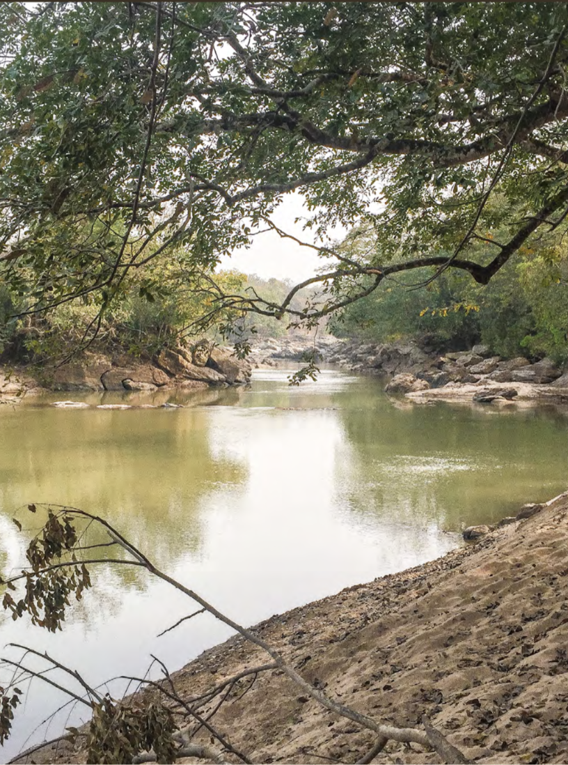 """Gashaka National Park, 7,000 sq km of untouched beauty … '""""hidden"""" in the eastern part of Nigeria"""