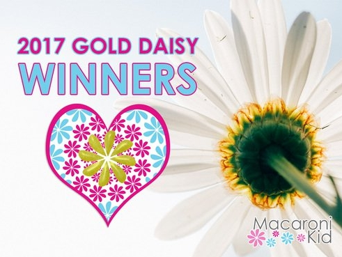 Macaroni Kid Gold Daisy 2017 Award Winner - Best Place for a Kids Birthday Party