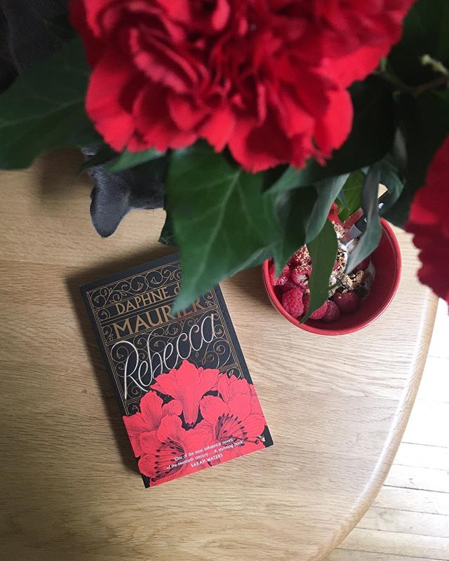 """Last night I dreamt I went to Manderley again"". I have been wanting to spend some time with ""Rebecca"" once more so the wet and windy weather today in Montreuil was just the excuse I needed ☺ I absolutely love this cover design and the fact that Oscar wanted a piece of the action ❤🖤 #booksofinstagram #bibliophile #bookworm #rebecca #daphnedumaurier #bookstagram #viragopress #shakespeareandcompany"
