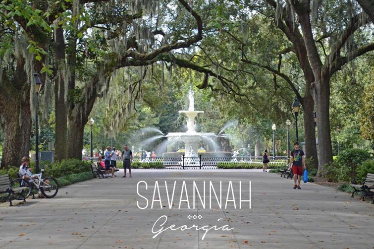 Savannah 4.PNG
