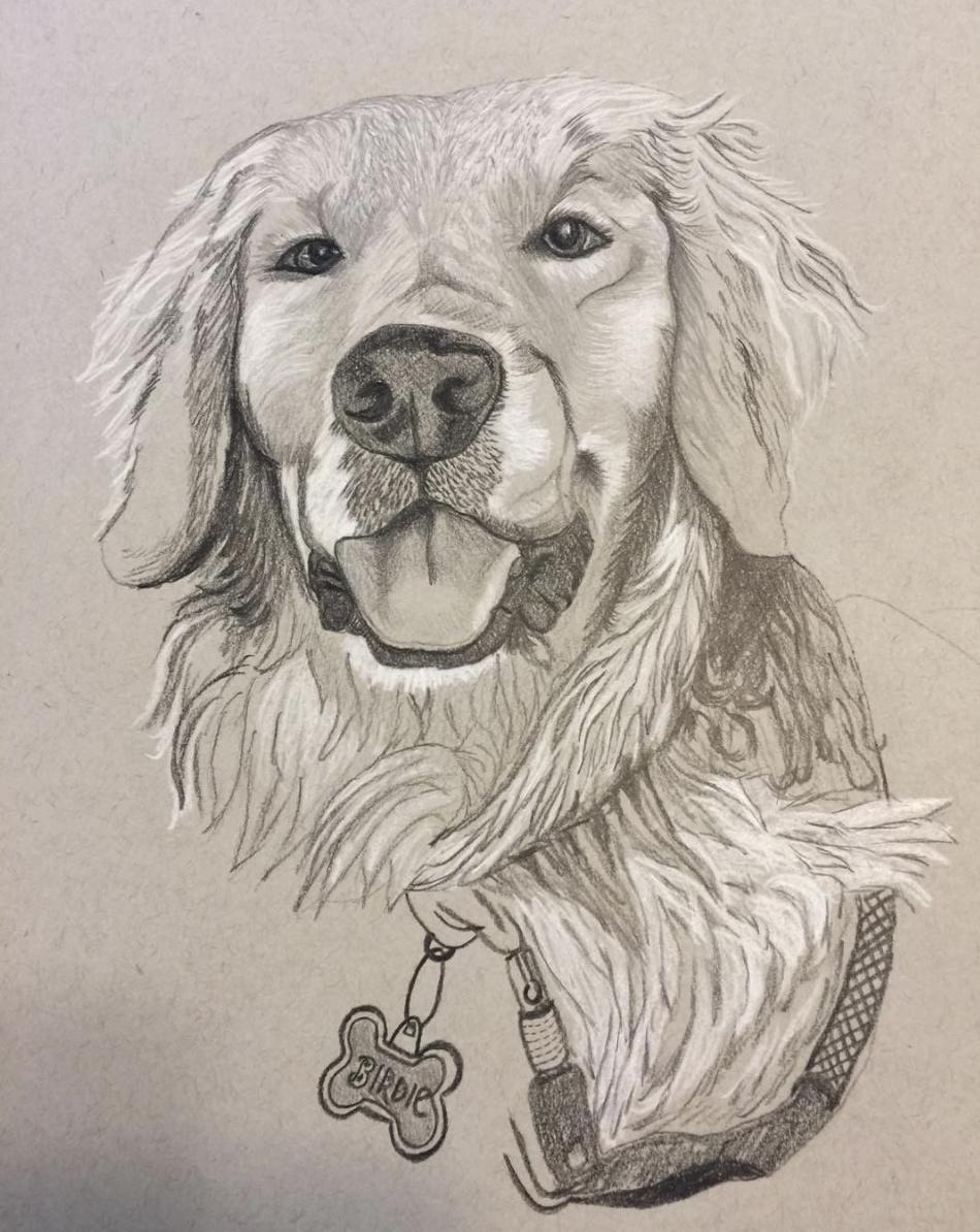 DonnaMacPherson-Dog.jpg