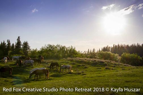 red fox creative studio - photo retreat 2018-2818.jpg