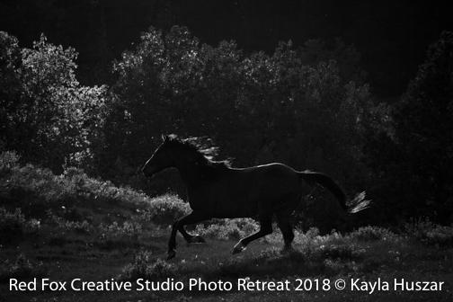 red fox creative studio - photo retreat 2018-2901.jpg