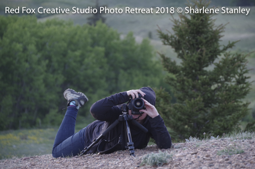 red fox creative studio - photo retreat 2018-6279.jpg