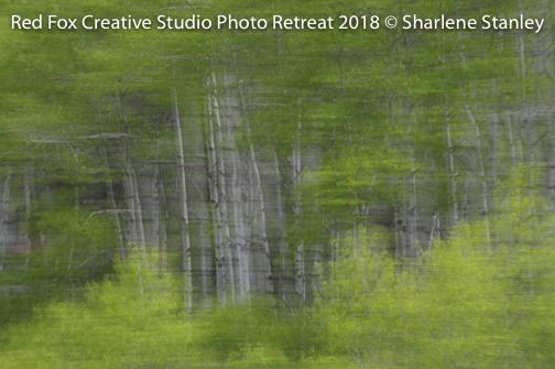 red fox creative studio - photo retreat 2018-6628.jpg