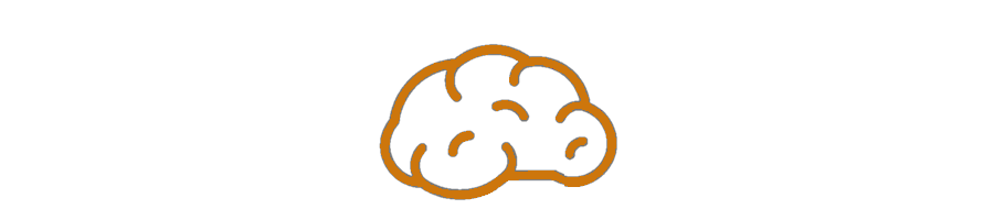 neuropsych icon burnt orange 900x200.png