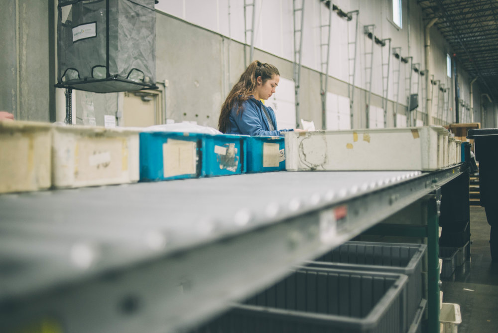 Image of a individual looking over paperwork, surrounded by plastic pins in a warehouse setting.
