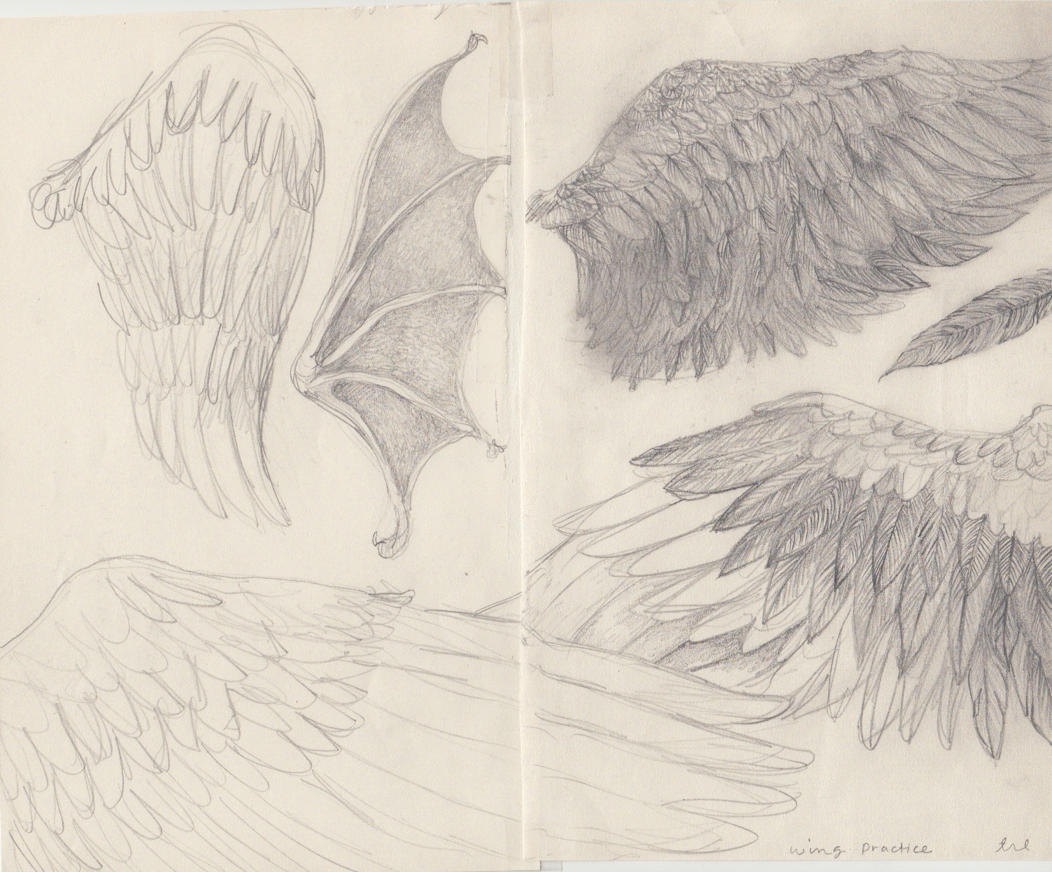 wing practice 2