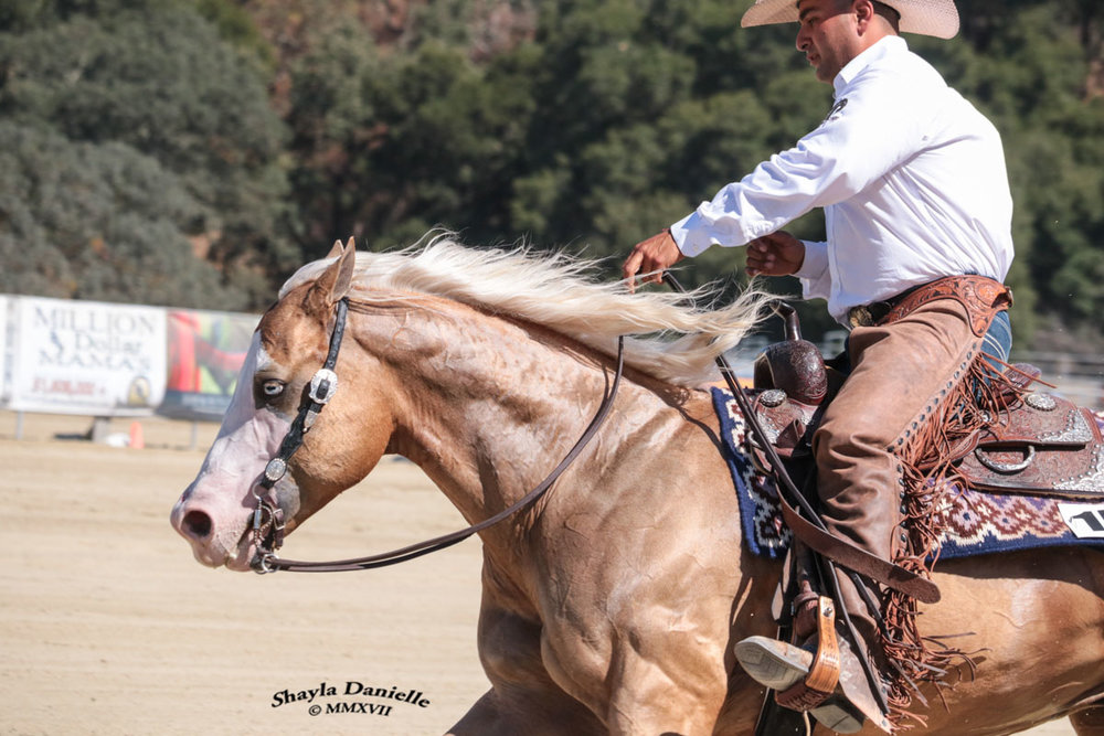 Chuy won the level 1 open Derby on Woody's Toy Gun, owned by Karin Dinapoli - Video