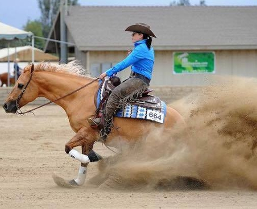 Alli and Rickybacinhollywood: DRHA Rookie - 5th Place Circuit - (Photo not from Reining By The Bay)