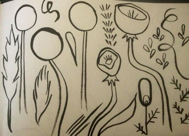pod flower sketch