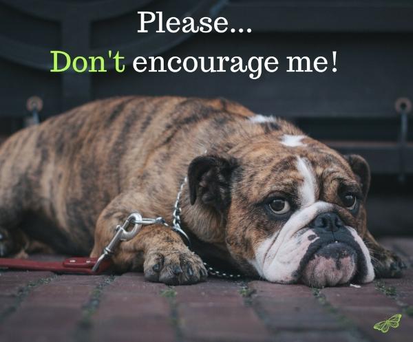 Please, don't encourage me!.jpg