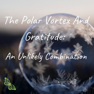 The Polar Vortex and Gratitude_ An Unlikely Combination.png