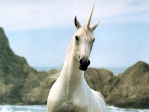 Unicorn realistic.jpg