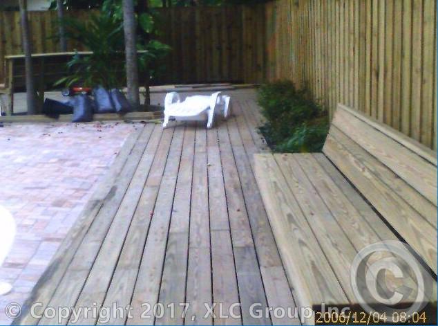 5 backyard.jpg