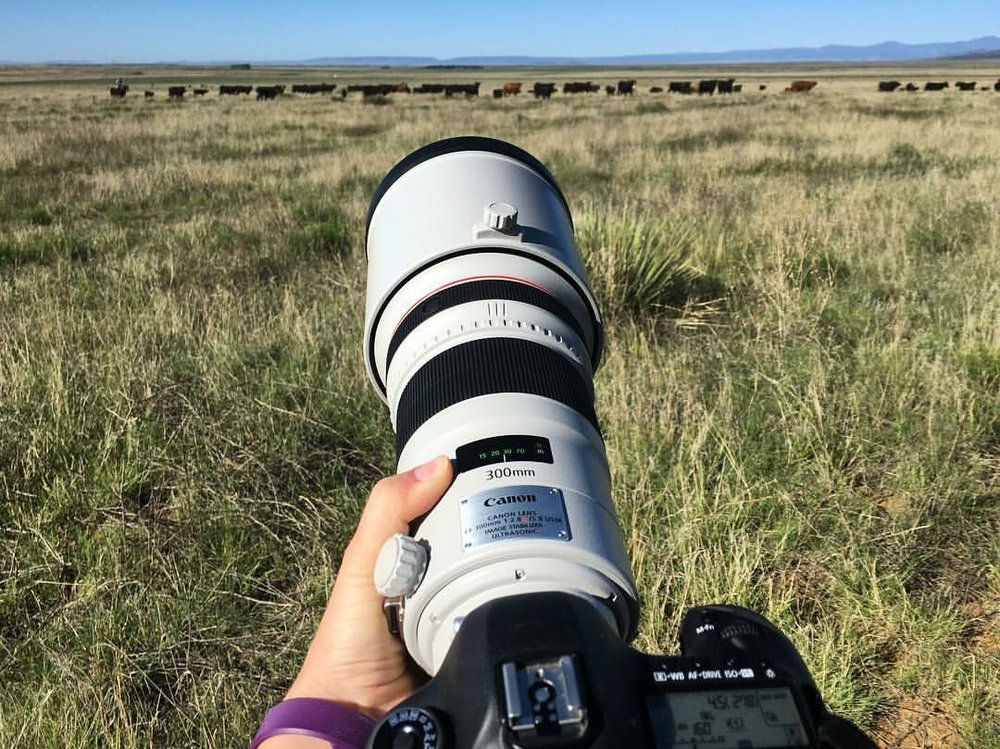 Abigail Boatwright's gear at work in New Mexico.