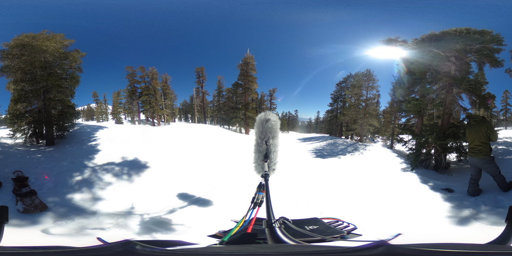 EXT_Day_Snow_SkiSlope_MediumDistanceEchoingVoices_DistantSkiing_DistantSnowboarding_DistantChairliftHum_MediumSpeedSkiBys_JPEG.JPG