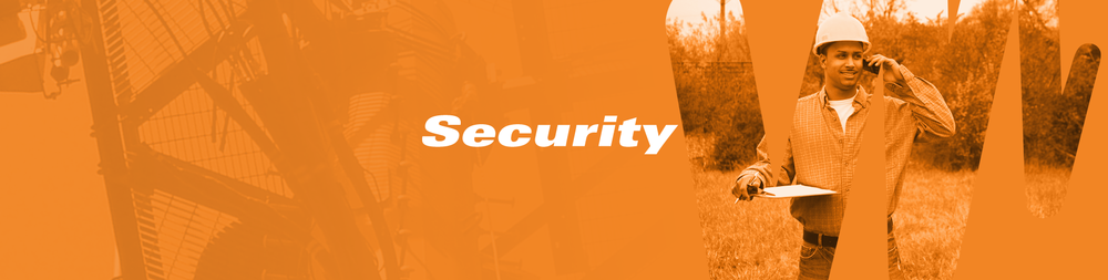 lmn_website_banner_security.png