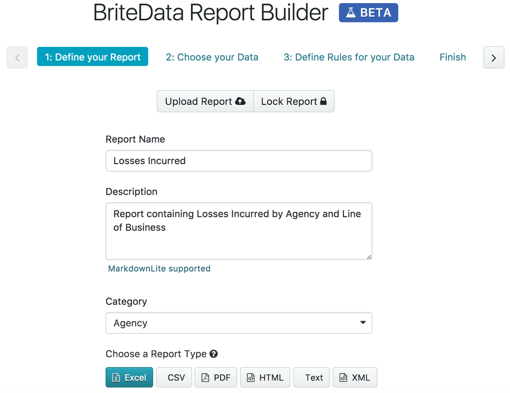 BriteData Report Builder - Define Report.png