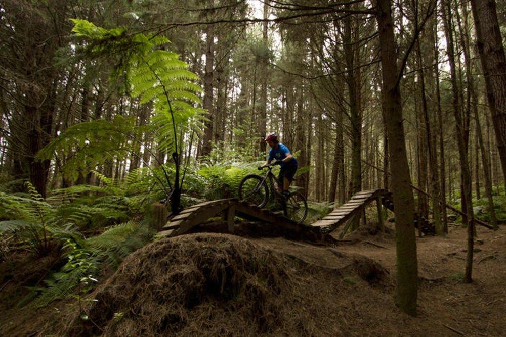 Rotorua biking.jpg