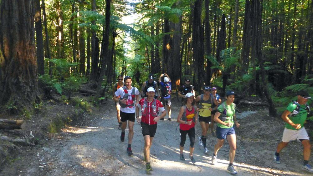 Rotorua running.jpg